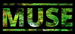MUSE_Logo